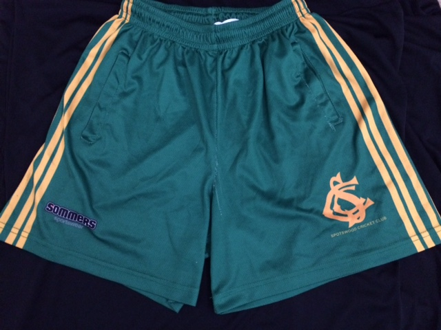 Sommers Shorts $20